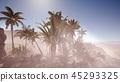 沙漠 沙丘 手掌 45293325