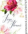 floral vector flower 45294797