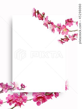 Beautiful spring background, spring background, spring flower frame 45298060