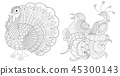 Turkey and peacock collection for coloring book pa 45300143