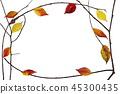 가을 프레임 _ 낙엽과 마른 가지 45300435