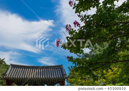 경주 불국사 파란하늘 blue sky 45300910