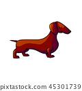 cartoon dachshund hunting 45301739