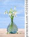 bouquet of fresh snowdrops flowers in a glass vase on wooden and blue background, vertical 45303048