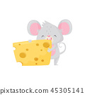 Adorable mouse eating big piece of cheese. Rodent with gray fur, big pink ears and long tail. Flat 45305141