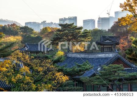 Changgyeonggung palace in autumn 45306013