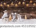 christmas, snowman, xmas 45310502
