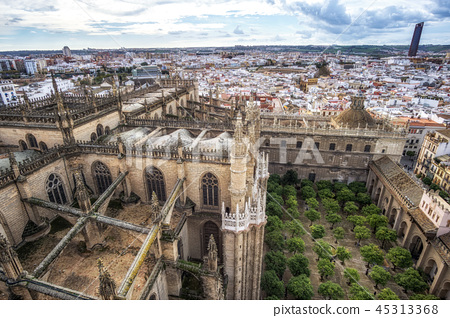 Seville cathedral and city view 45313368