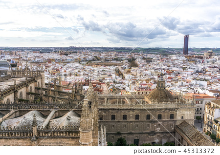 Seville cathedral and city view 45313372