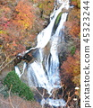 瀑布 楓樹 紅楓 45323244