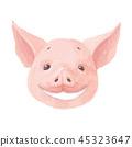 pig, animal, drawing 45323647
