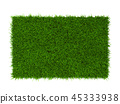 Green grass lawn 45333938