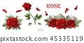 rose red flower 45335119