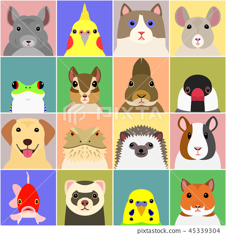 各種寵物臉設置背景顏色 45339304