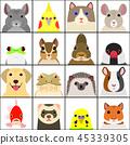 各種寵物臉設置背景顏色 45339305