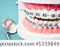 鏡子 牙齒 模型 45339840