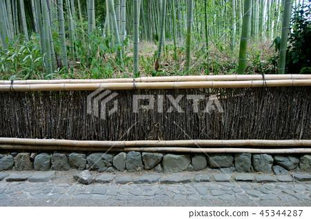 日本京都竹林和鵝卵石景觀日本京都竹叢 45344287