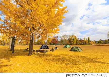 가을 캠핑 45345122