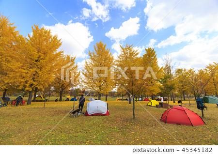 가을 캠핑 45345182