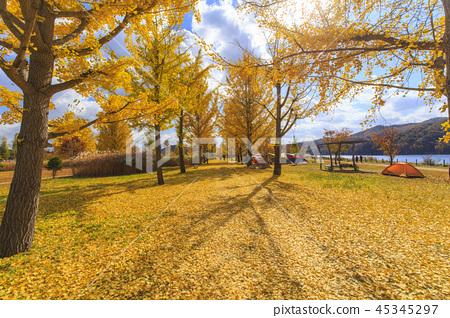 가을 캠핑 45345297