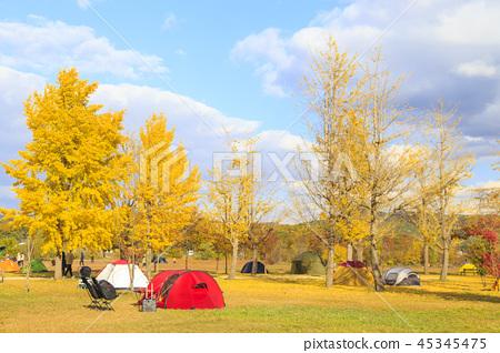가을 캠핑 45345475