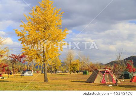 가을 캠핑 45345476