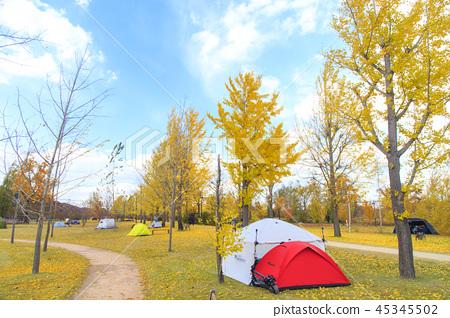 가을 캠핑 45345502