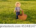 ทุ่งหญ้า,ฤดูร้อน,หน้าร้อน 45348147