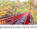 Jozankei Futami Suspension Bridge in Autumn forest 45351914