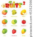 Fruit Vector icon 45352566