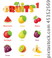 Vector fruits icon set 45352569