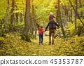 公园 行走 步行 45353787