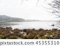 Misty pond at fall season 45355310
