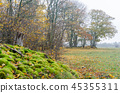 Colorful fall season view 45355311