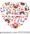 cute animal funny 45355638