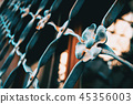 Closeup of a fence of a window with flowers made 45356003