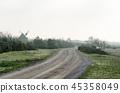 Misty gravel road among junipers 45358049