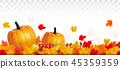 vector autumn leaf 45359359