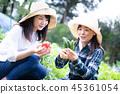 เกษตรกรรม,ผัก,ชาวนา 45361054