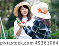 เกษตรกรรม,ผัก,ชาวนา 45361064