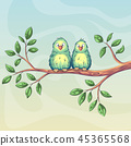 Two Birds On Branch 45365568