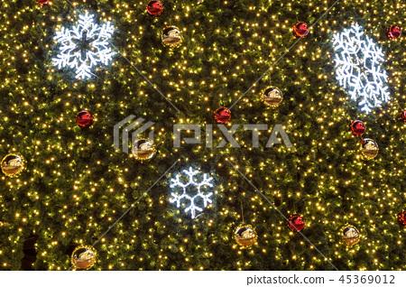 christmas tree 45369012