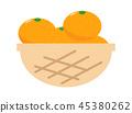 ส้มแมนดาริน 4 45380262