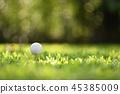 Golf 45385009