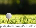 Golf 45385017