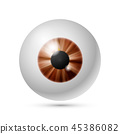 Vector azure brown eye ball 45386082