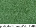 พื้นหลัง,พื้น,หญ้า 45401588