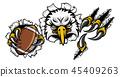eagle football vector 45409263
