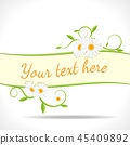 background, camomile, flower 45409892