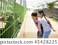Cute little boy and girl harvesting together. Gardening, planting concept photo 120 45428225